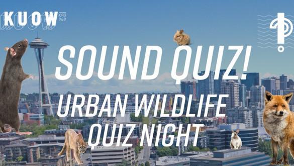 Sound Quiz: Urban Wildlife Quiz Night